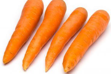 Carciofi, finocchi, carote, basilico