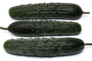 Cetrioli e zucchine