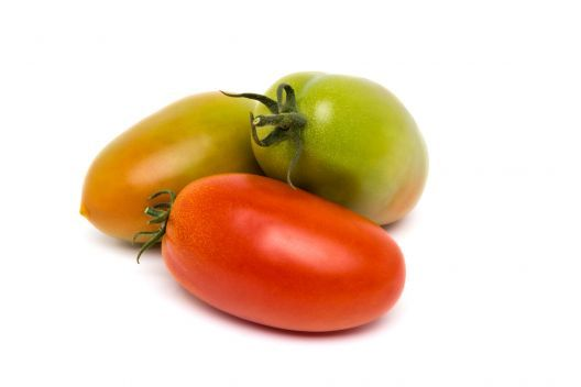 Pomodoro insalataro oblungo